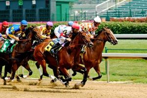 Horse Racing Fundraiser